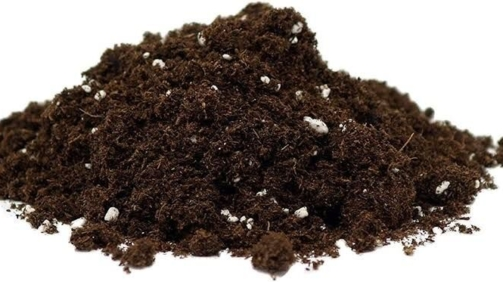 Coco Coir and Potting Soil